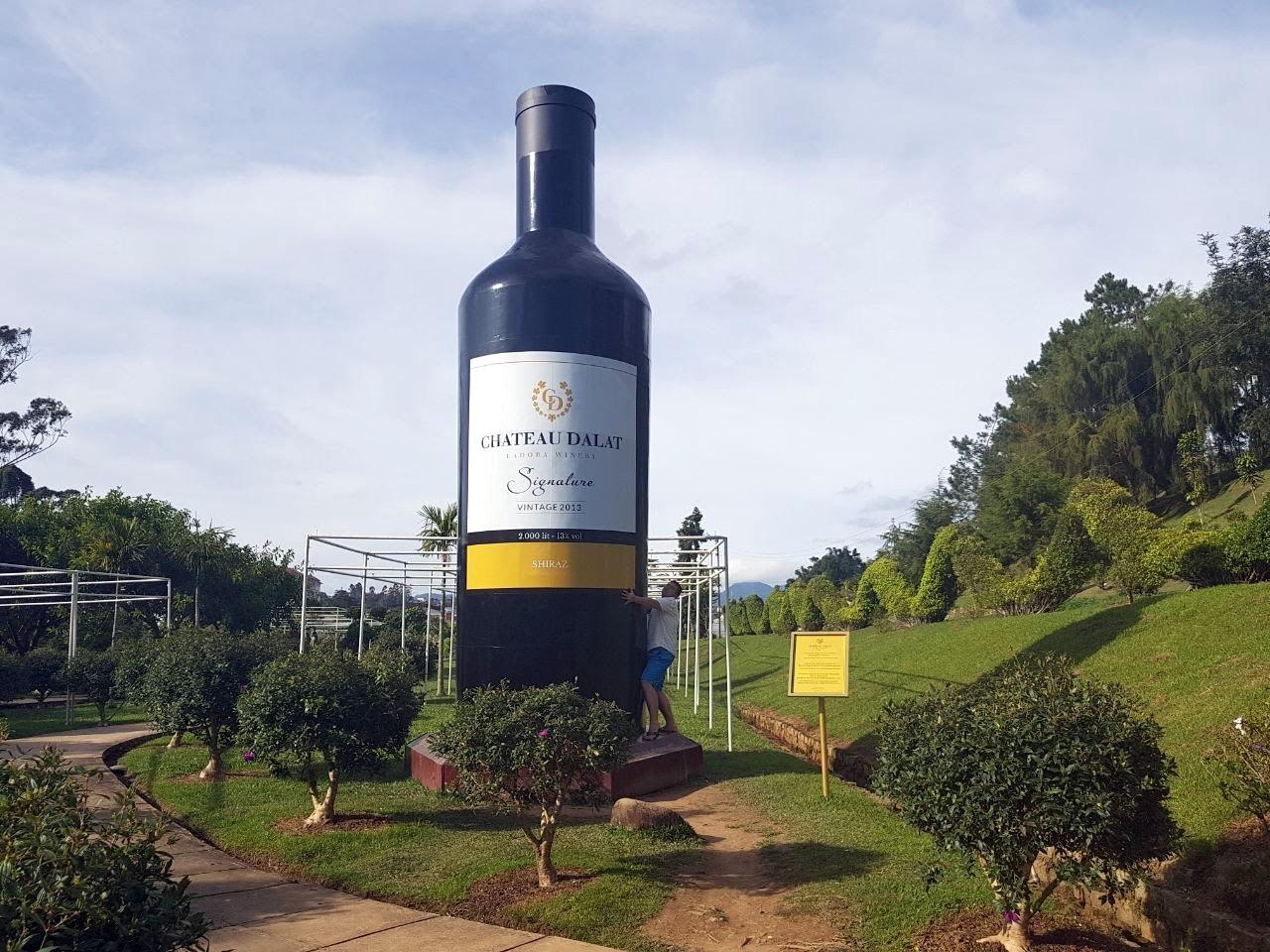 В саду растений. Видать вино начинает и тут набирать обороты. Кстати так в глаза и не бросалось Вьетнамское вино )